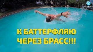 Техника плавания баттерфляем: хочешь освоить, учи брасс!!!(Видеокурс как научиться плавать баттерфляем - http://swiminthai.ru/but/ Видеокурс как научиться плавать кролем - http://swim..., 2016-06-09T10:52:47.000Z)
