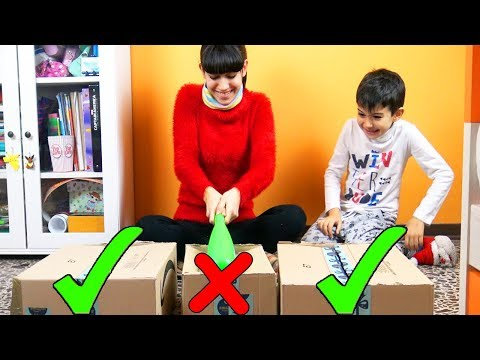 NON ROMPERE LA SCATOLA SBAGLIATA - Do not destroy this box challenge!!