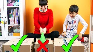 NON ROMPERE LA SCATOLA SBAGLIATA - Do not destroy this box challenge!!