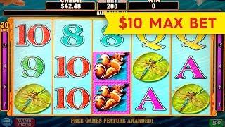Download Lotus Flower Slot 10 Max Bet Big Win Bonus For Music