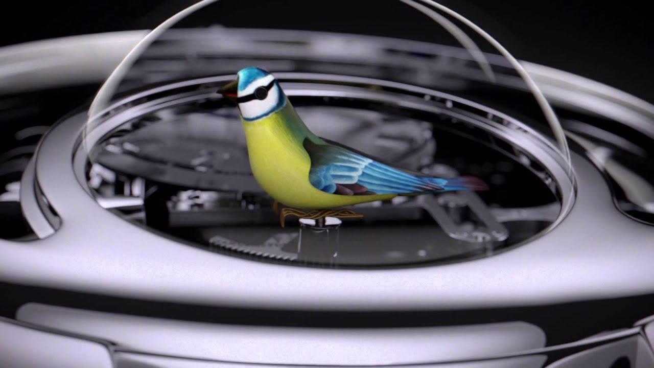 Birdwatching - Wikipedia