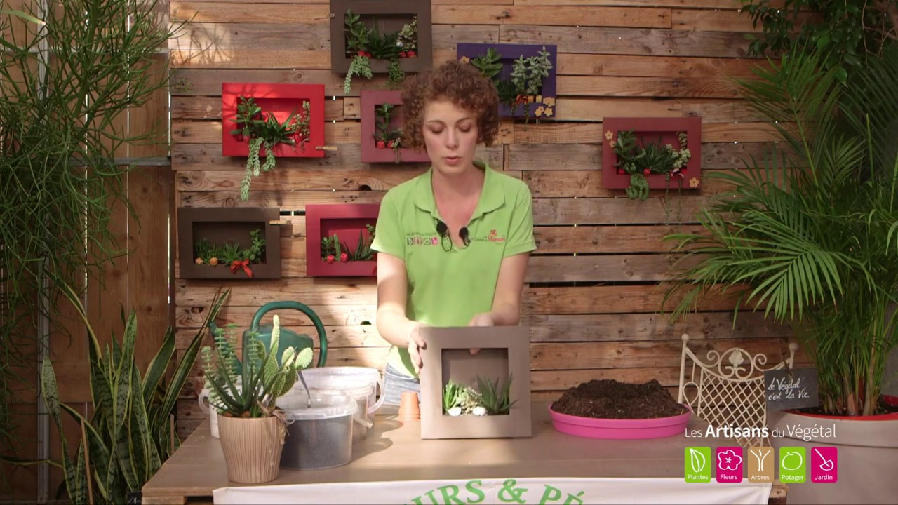 Plantes Pour Tableau Végétal Intérieur comment faire un cadre végétal, tableau végétal pour décorer son intérieur ?