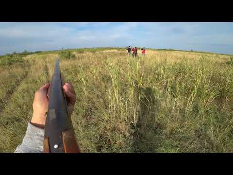 Охота на Фазана 2019(Осторожно маты)