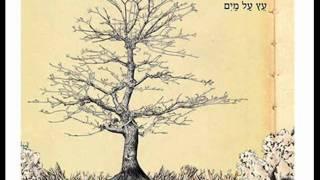 עמיר בניון – עץ על המים