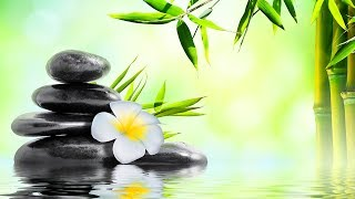Relaxing Music 24/7, Meditation, Reiki Music, Healing, Spa, Stress Relief, Zen, Study, Sleep Music