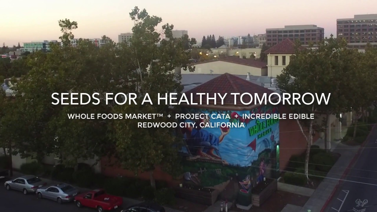 Whole Foods Redwood City Ca
