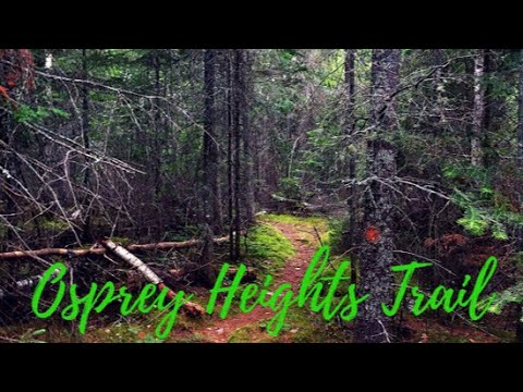 Adventure To Osprey Heights Hiking Trail Northern Ontario Canada