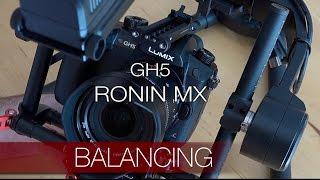 GH5 - équilibrage sur Ronin MX et essais