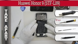 How to disassemble 📱 Huawei Honor 9 (STF-L09) Take apart Tutorial