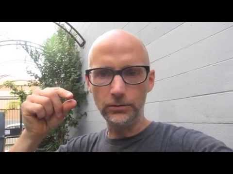 Moby Answers Your Questions: Talking animals