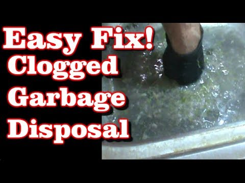 Clogged Garbage Disposal (EASY FIX!)