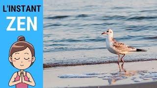 L'INSTANT ZEN #014 - Plage du Gros Jonc (Île de Ré)