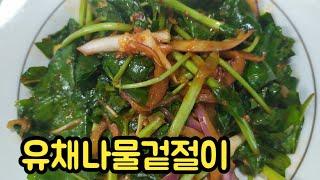 입맛 돋는 유채나물겉절이 - 김혜영의 싱글벙글요리 레시…