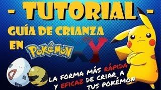 Tutorial: Guía de crianza avanzada - Sexta generación (Pokémon X/Y)