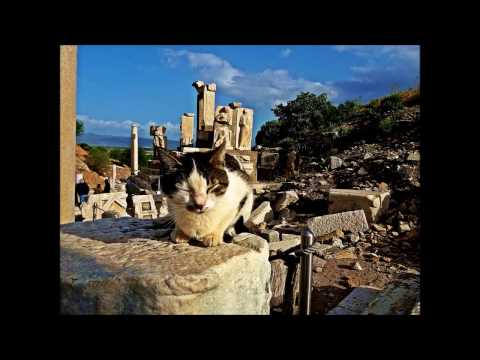 EPHESUS - Ancient Greek City