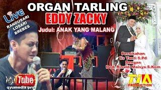 Video ORGAN TARLING EDDY ZACKY LIVE RANDUSARI LOSARI BREBES 26 DESEMBER 2017 EDISI TENGAH MALAM download MP3, 3GP, MP4, WEBM, AVI, FLV Februari 2018