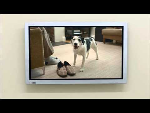 Thinkbox TV - 'Dogs Home' in Austria