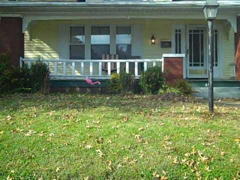 Ogres visit roseanne conner 39 s house youtube for Conner home