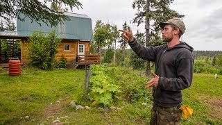 Off The Grid In Alaska ~ A Tiny Home & Farm In The Alaska Bush ~ Full Tour