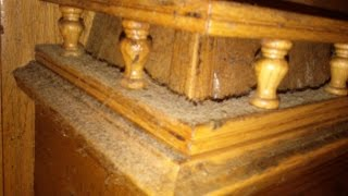 How To Clean Greasy Paleo Kitchen Cabinets, Using Natural Products.