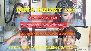 HOW TO GET RID OF FRIZZY HAIR NATURALLY | HAIR CARE CHALLENGE IN MALAYALAM