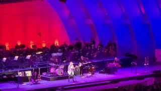Chrissie Hynde   11 Hollywood Bowl 07 06 19