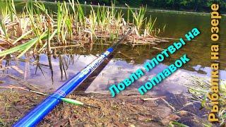 Плотва весной на поплавок Рыбалка в Нижнем Новгороде Плотва на поплавок Рыбалка 2021 Ловля плотвы