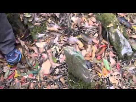 Meghalaya Story of the Talking Stones