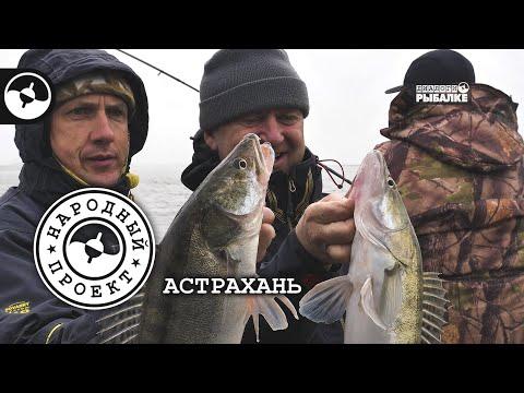 Судак на джиг. Астрахань | Народный проект