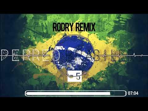 PERREO BRASILERO #5 -RODRY REMIX-2017