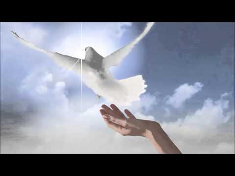 Mauri Viksten Taivaan Linnut