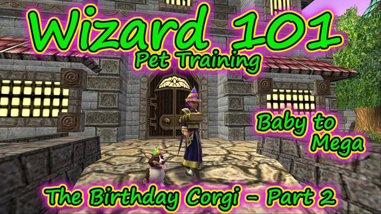 2018 Gobbler Wizard101 Party Corgi Wwwpicsbudcom