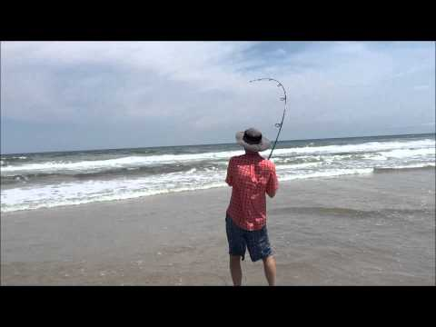 Shark Catch and Release Topsail Island NC