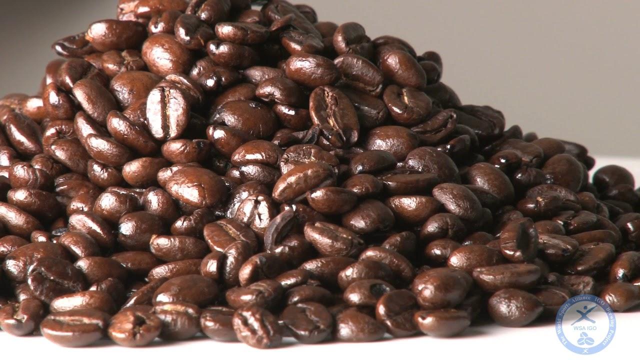 WSAIGO Coffee Brewing Project