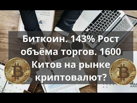 Скрипт игры на биткоин скачать карта дня таро онлайн работа