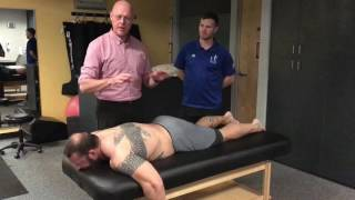 YAP Demonstration with Dr Justin Dean and Guido Van Ryssegem