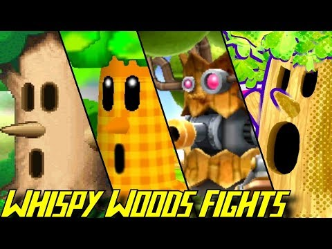 Evolution of Whispy Woods Battles (1992-2018)