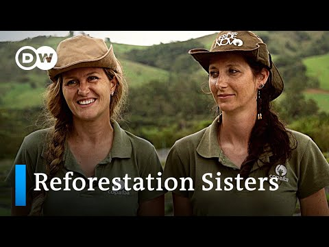 Brazil: Reforestation to replenish water supplies | Global Ideas