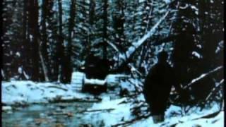 Constuction Of The Alaska Highway (1944)