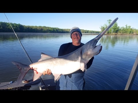 Fishing Paddlefish & Youth Turkey Hunting - Larry Smith Outdoors
