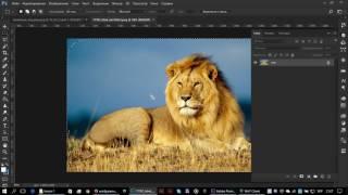 Уроки Photoshop. Как сделать размытие по краям картинки.