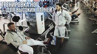 ТРЕНИРОВКА НОГ ДЛЯ ВЫСОКИХ ПАРНЕЙ (Sportfaza)