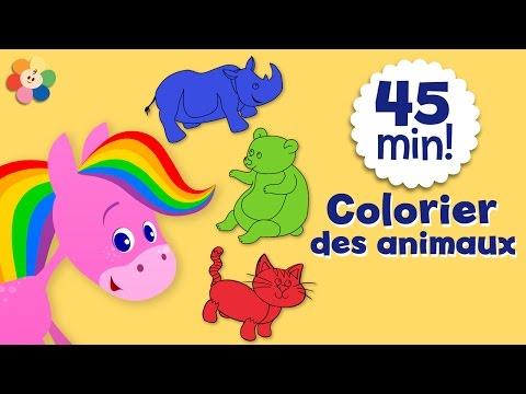 Coloriage pour enfants | Colorier des animaux | Le cheval arc-en-ciel | BabyFirst