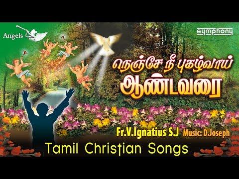 நெஞ்சே நீ புகழ்வாய் ஆண்டவரை | Fr Ignatius SJ | Tamil Christian songs