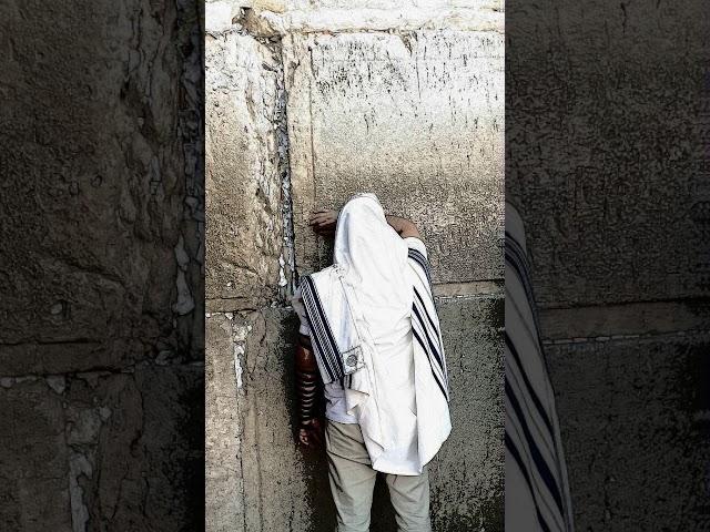 Rabbi Akiva Tatz - Level of the Spirit/ Torah of Abraham