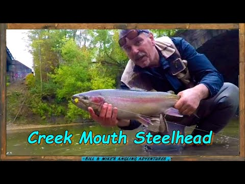Creek Mouth Steelhead 2020