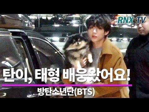 BTS ( 방탄소년단) 뷔 (V/태형), 연탄이가 배웅왔어요! - RNX tv