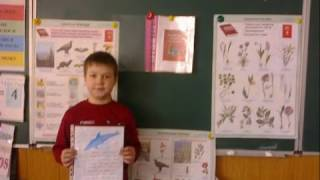 Урок природознавства 2 клас