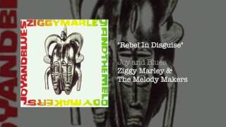 Watch Ziggy Marley Rebel In Disguise video