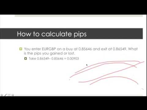 what is a pip in binary options